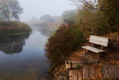 Место тихих дум природа пейзаж утро осень река Усманка туман