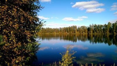 Осенняя Осень озеро вода природа лес