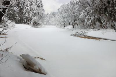 Зимнее безмолвие зима река снег деревья лёд январь