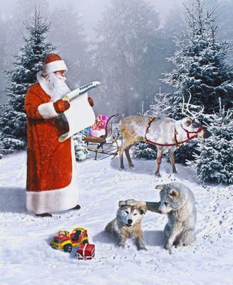 Собирайся...... Дед Мороз новый год