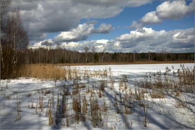 Весна с зимою борятся. оэеро камыши облака