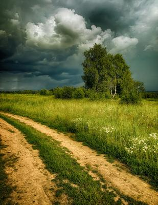 Надвигается гроза лето полевая дорога надвигается гроза тучи березы