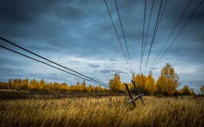 *** осень поле пейзаж линии холод столб