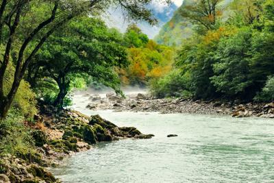 Седой туман у горной реки.