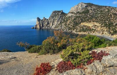Новый Свет Крым Новый Свет море Черное берег Караул-Оба осень октябрь
