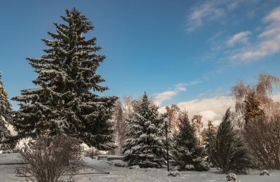 *** Высота 102 Зимний пейзаж в парке Парк Победа Мамаев курган Храм Всех Святых шикарная природа Зима Южный склон Мамаева кургана