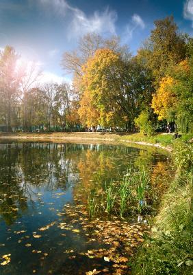 шлю осень