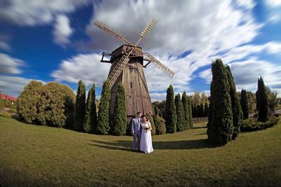 Молодожены невеста помолейко свадьба wed wedding park парк