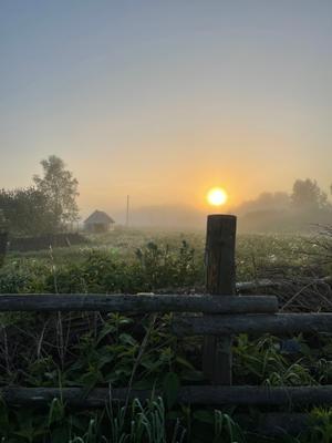 Утро в деревне калужскаяобласть юхновскийрайон