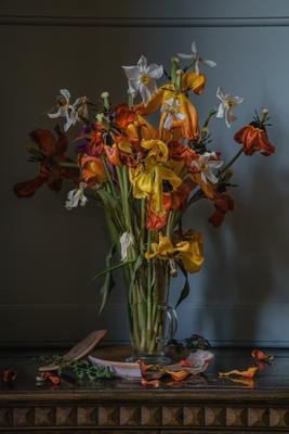 Увядший весенний букет натюрморт стекло цветы тюльпаны нарциссы