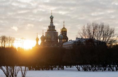 Спас на Крови архитектура город собор день Санкт-Петербург Россия зима солнце небо