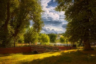 """Лето в парке """"Кузьминки"""" Лето Москва старый парк облака солнце чудесный день"""