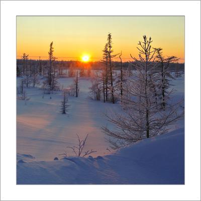Зимний квадрат...(14) Зимний квадрат 14 ЯНАО Новый Уренгой
