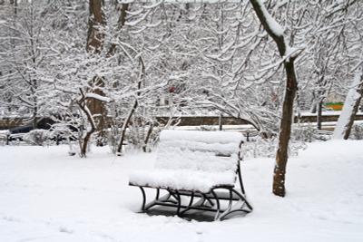 В одиночестве... севастополь зима снег скамейка