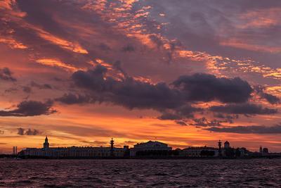 Горячее небо холодного города Питер закат