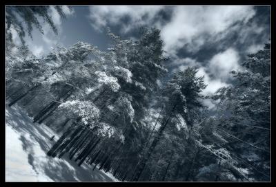 snowtime#2