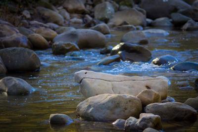 *** Осень река отражение камни