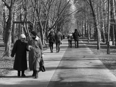 Прогулки в парке Город парк люди прогулки деревья чёрно-белая фотография день небо