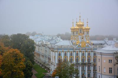 В Пушкине легкий туман... Пушкин осень туман