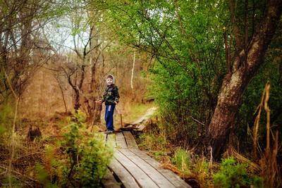Там на неведомых дорожках.... ребенок лес тропинка дорожка тротуар дебри кущи кусты сказка