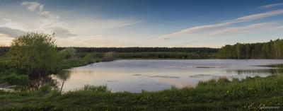 Запруда лес река запруда водоём пейзаж панорама