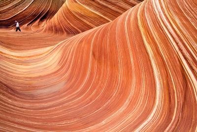 The Wave Arizona, Paria Canyon Vermilion Cliffs The Wave
