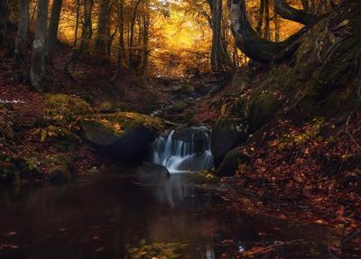 Осенний водопад Осень лес водопад Карпаты
