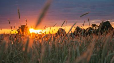 *** Восход солнце рассвет природа пейзаж Беларусь