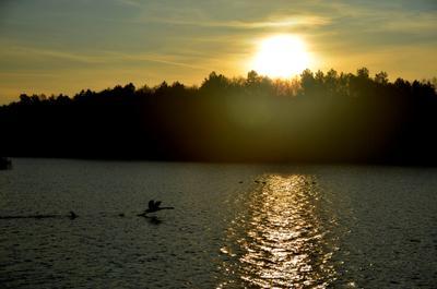 *** вечер пейзаж озеро природа