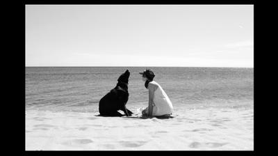 Друзья  море, пляж, девочка, собака