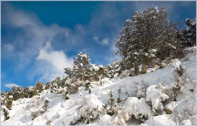 Первоапрельский снег Кыргызстан горы апрель