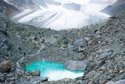 Алтай. Ледник Актру. алтай горы актру ледник озеро