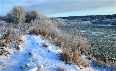 По первому снегу ноябрь река Ухта Коми 14.11.2020