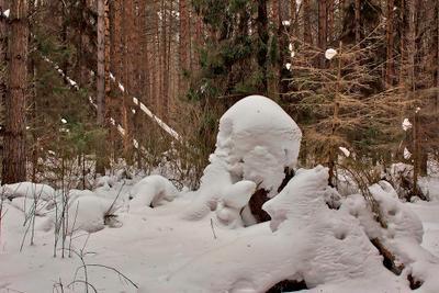 ПРИРОДА ЛУЧШИЙ ХУДОЖНИК*** снежные скульптуры в лесу зверюшки человечки