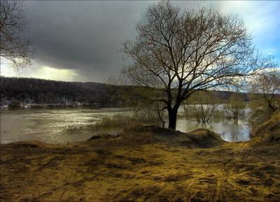 А всё-таки весна. река лес дерево половодье небо тучки