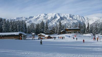Лыжная сказка. Горные лыжи, Горы, Альпы , Елки , Отпуск , Франция
