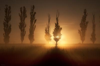 Солнце красит ...