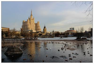 """Большой пруд"" московского зоопарка. зоопарк"
