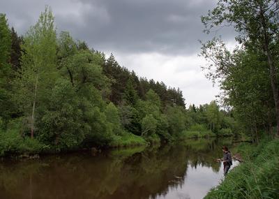 Река Дубна река дубна