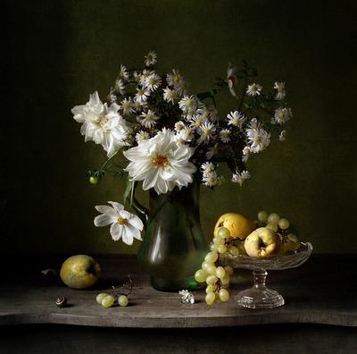 *** цветы айва хризантемы