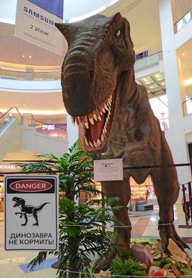 Не боись! Я на диэте... ну, почти! ))) (Времена, эпохи, эры. Динозавры) Времена эпохи эры Динозавры Тиранозавр Музей