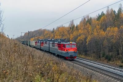ВЛ80С-2474 ВЛ80С-2474 ВЛ80С-1507 сев сжд жд транссиб поезд транспорт шекшема варакинский перегон локомотив электровоз