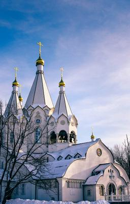 Храм Новомученников и Исповедников Российских храм церковь