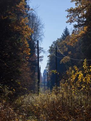 Осень сталкера