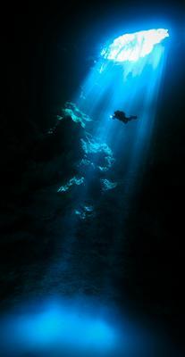 Cenote Pit,Mexico Cenote Pit