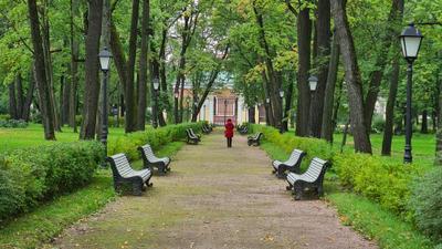 к осени Каменноостровский дворец парк