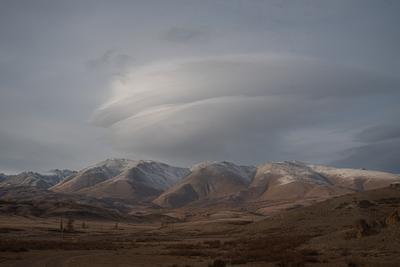 осенний Алтай пейзаж Алтай природа