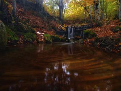 Осени водоворот Карпаты водопад осень склоны горы Великий Верх