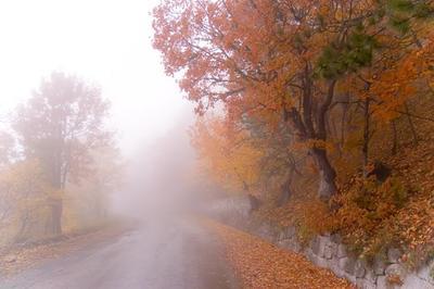 * * * Ай-Петри, серпантин, Крым, облако, осень