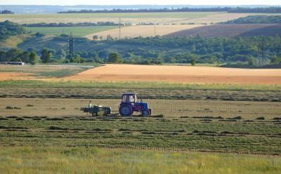 *** Пейзаж поле трактор